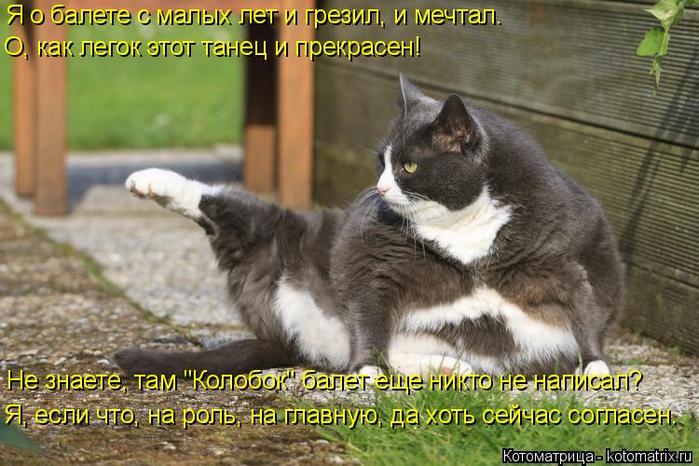 kotomatritsa_6 (700x466, 374Kb)