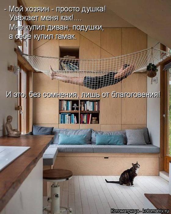 kotomatritsa_E (560x700, 377Kb)