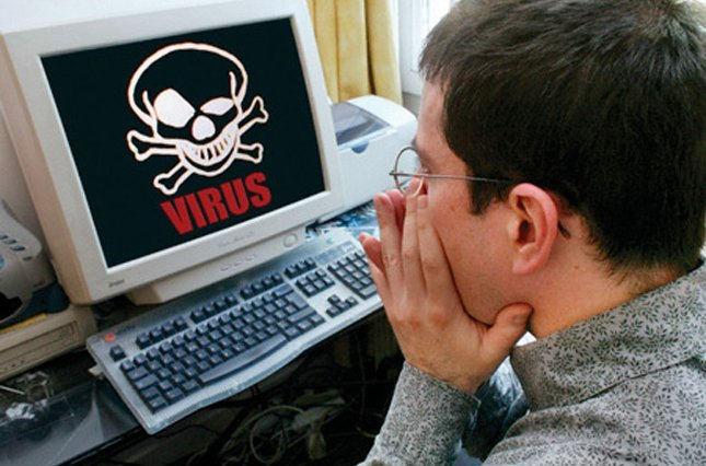 Компьютерные вирусы можно сравнить с блохами