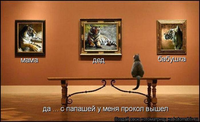 kotomatritsa_O (700x427, 271Kb)