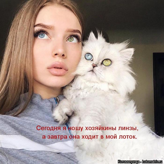 kotomatritsa_wj (700x700, 415Kb)