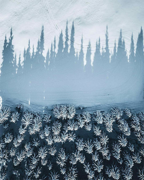 Зимние забавы и магия света: декабрь глазами обычных людей