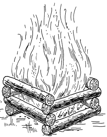 Приготовление рыбы на открытом огне. Типы костров
