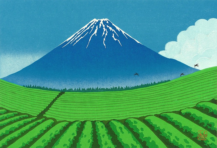 Mt. Fuji in Summer (700x478, 395Kb)