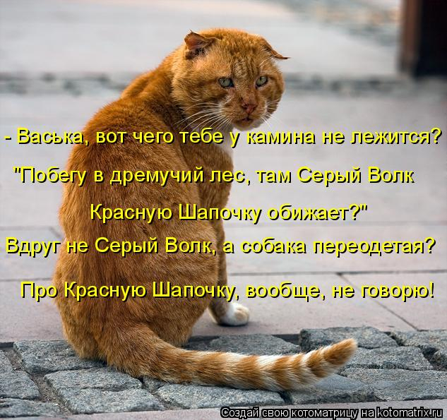 kotomatritsa_5 (633x595, 349Kb)