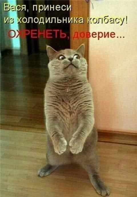 http://img1.liveinternet.ru/images/attach/d/2/149/959/149959375_56505463_425803814833833_5543661060864606208_n.jpg