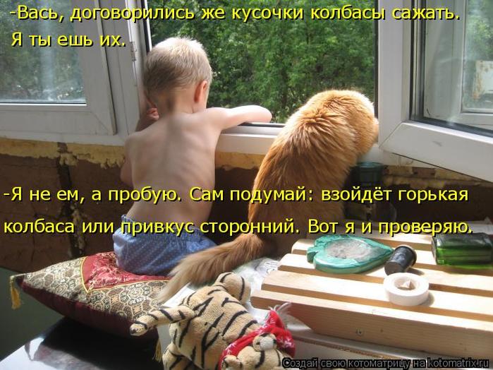 kotomatritsa_J (700x524, 431Kb)