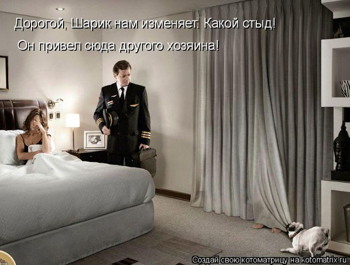 kotomatritsa_p (1) (700x529, 280Kb)