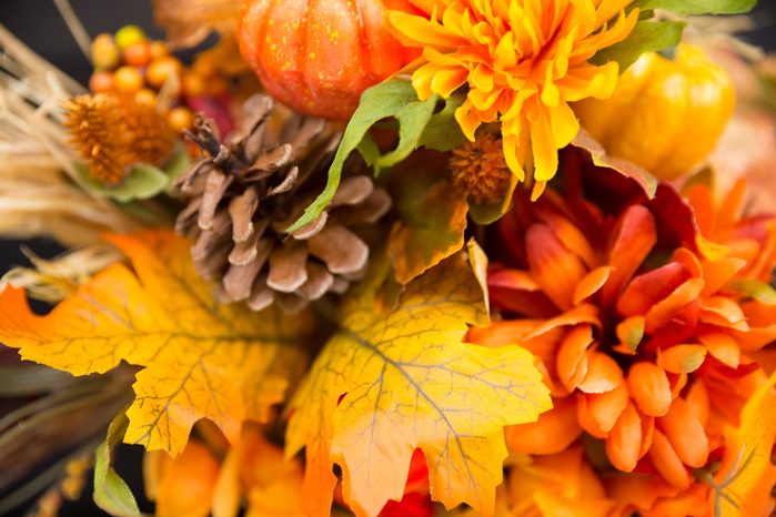 fall-flowers-2716513_1280 (700x466, 395Kb)