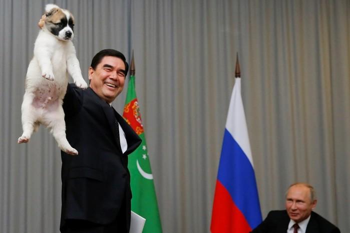 В Туркмении заблокировали «Википедию» из за обидных слов в статье о президенте