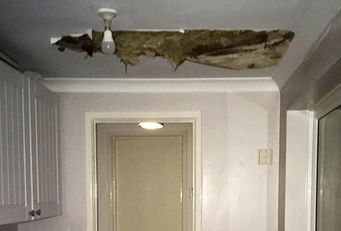 Самые ужасные квартиры, которые доводилось снимать