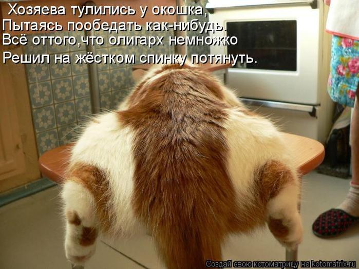 kotomatritsa_J (700x524, 379Kb)