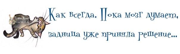 1376102310_frazochki-1 (604x181, 65Kb)