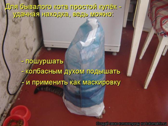 kotomatritsa_w (700x524, 344Kb)