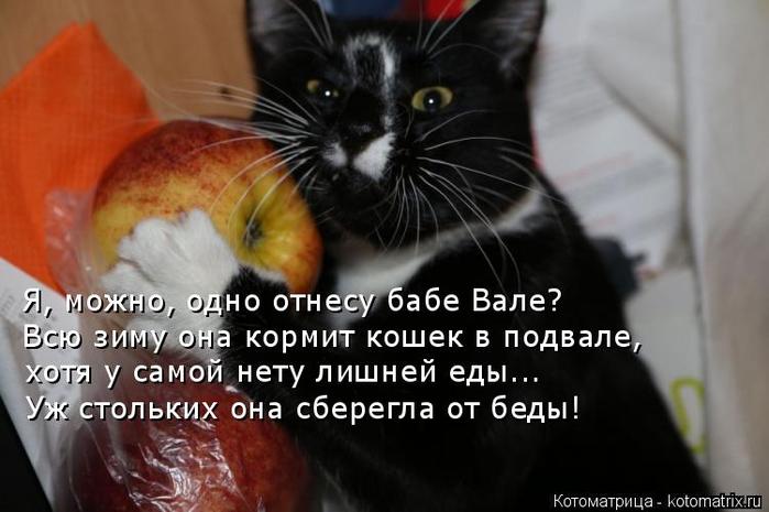 kotomatritsa_UB (700x465, 236Kb)