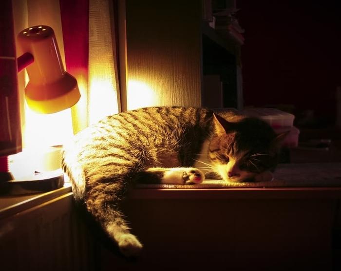 blog-24-hour-to-go-get-sleep (700x555, 241Kb)