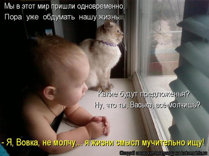 kotomatritsa_2 (700x524, 289Kb)