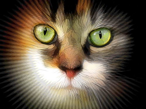 mystical_cat_02 (500x375, 35Kb)