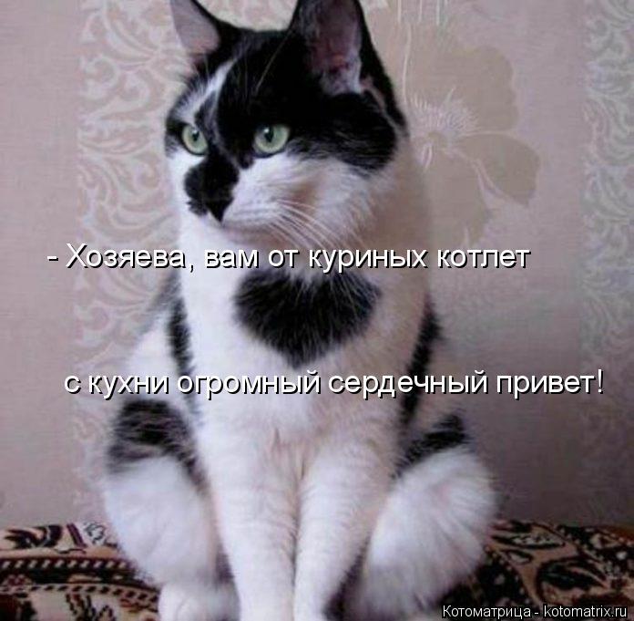 kotomatritsa_9f (696x681, 233Kb)