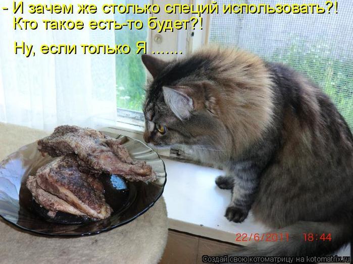 kotomatritsa_- (700x524, 391Kb)