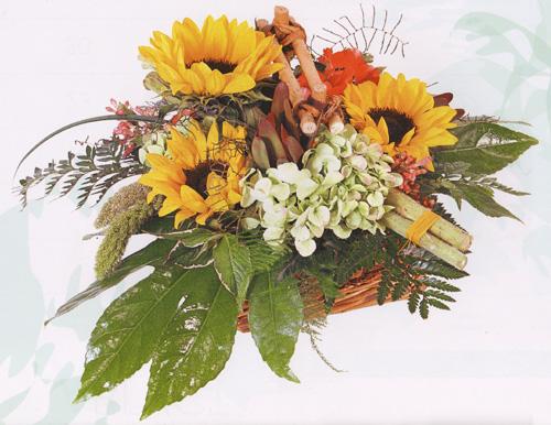 Оптовая база цветов спб авиагородок
