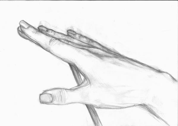 Научится рисовать карандашом для начинающих цветы поэтапно