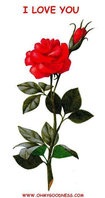 смс поздравления с 23 февраля брату от сестры прикольные