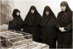 Посмотреть все фотографии серии Черногория