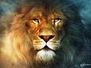 Посмотреть все фотографии серии Лев