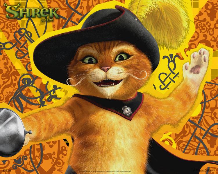 Фотография №1523 на тему злой кот из