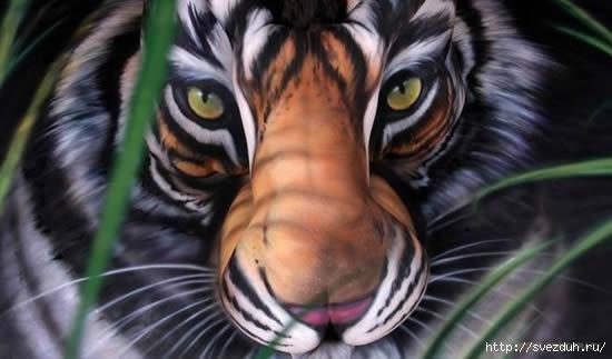 боди арт тигр