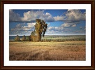 Посмотреть все фотографии серии Мои работы в Фотошопе