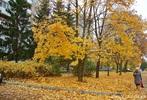 Посмотреть все фотографии серии Осень в моем городе