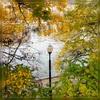 Посмотреть все фотографии серии My Fall