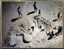Посмотреть все фотографии серии Выставка японской фотографии в ЦДХ