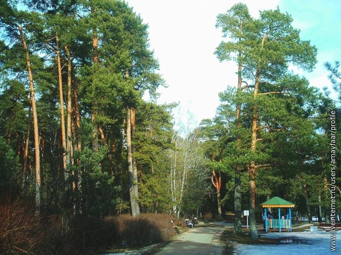 Хороша дорожка вначале парка - справа детская площадка