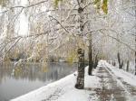 Ещё вчера, - как снимок дилетанта, -  Осенний день расплывчат был и слеп,  А нынче скрупулёзно и детально  Его дорисовал внезапный снег.