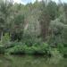 Река Бердь  у Маслянино