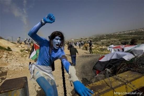 нави в палестине
