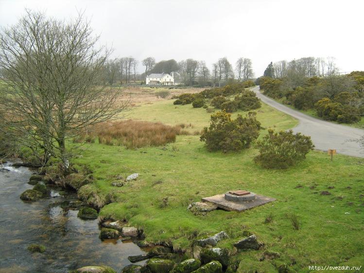 болота фото