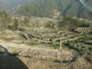 Посмотреть все фотографии серии Непал,, обработанная земля