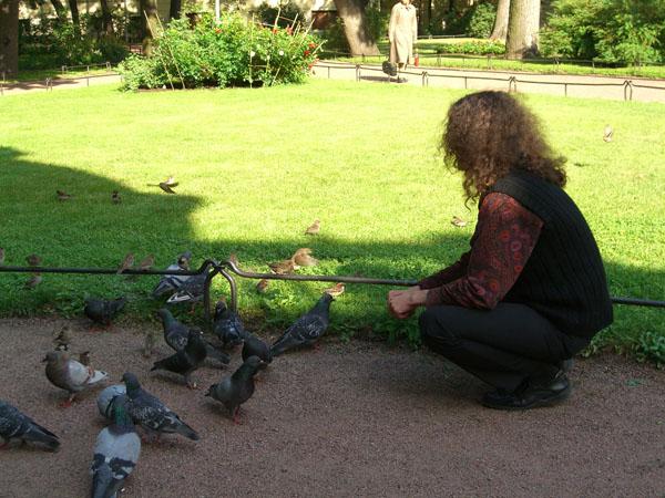 Дрозд и другие птицы.