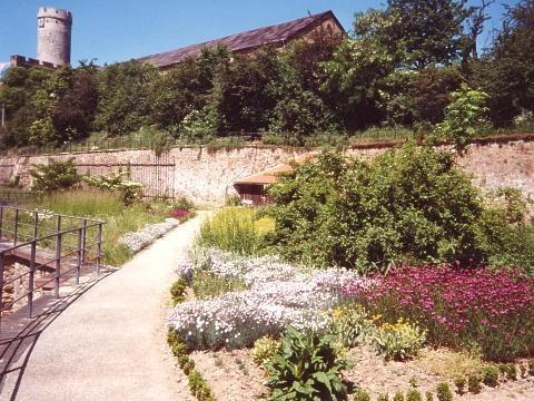 Крепость Гнандштайн (нем. Gnandstein) 61581