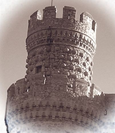 Замок в Мансанарес Эль Реал 80382