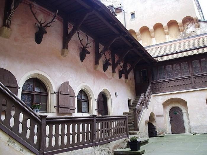 Das Schloss Kuckuckstein 50543