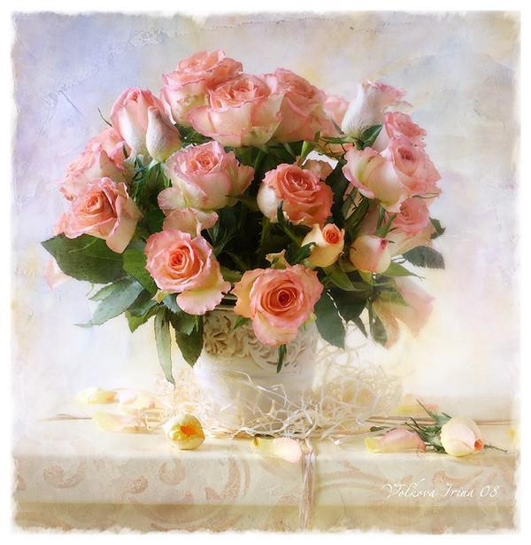 Roses.№22