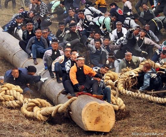 японцы на бревнах