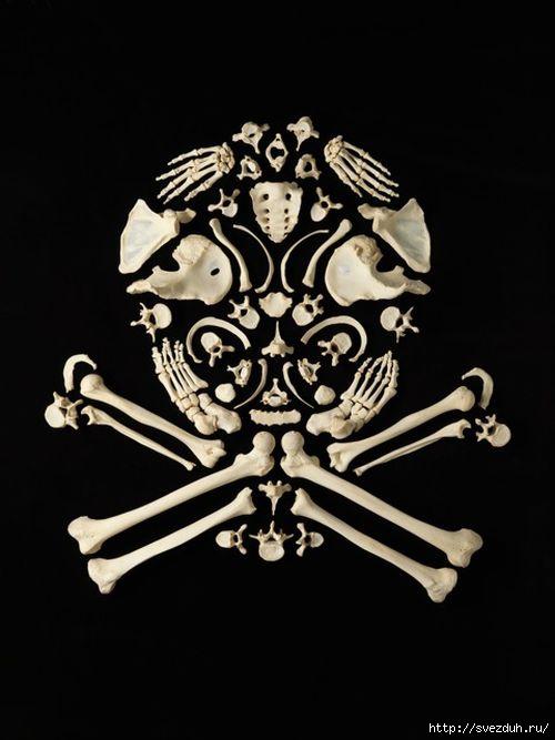 картины из костей
