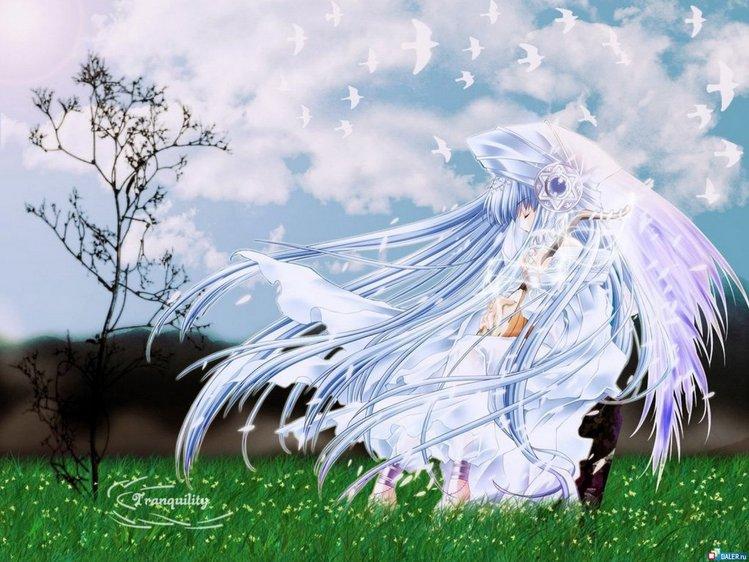 http://img1.liveinternet.ru/images/foto/b/2/393/1843393/f_7426588.jpg