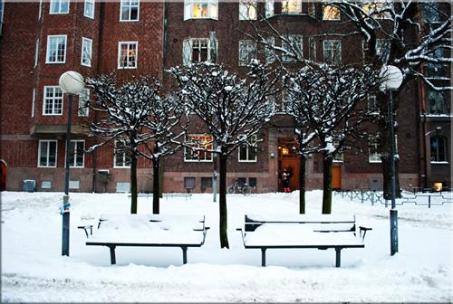 Круиз в Стокгольм - незабываемый отдых. — фото 5